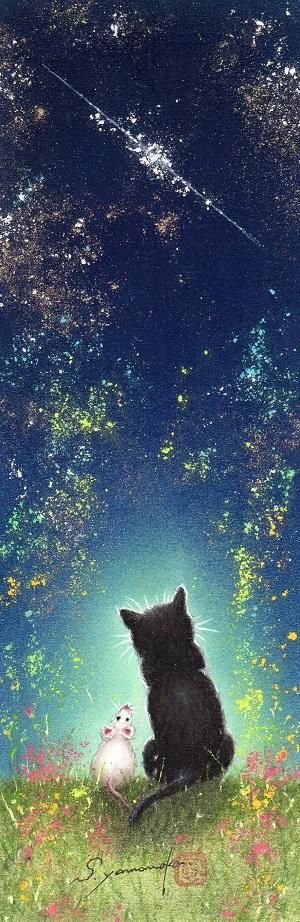流れ星に願う (聖路加)