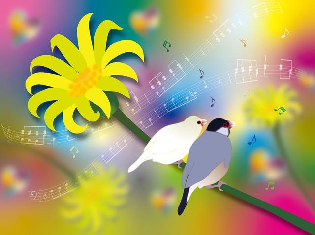 Harmony♪
